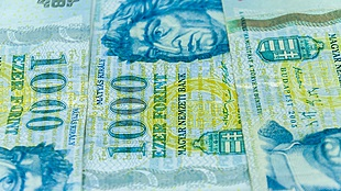 Hungary Fidesz victory could dampen forint gains