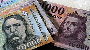 Hungary cenbank faces new test, and so does the forint