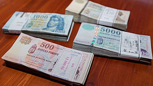 Turkey's lira eases again, but Hungary's forint remains unfazed
