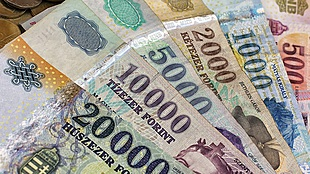 There is still some 'juice' left in Hungary's forint