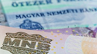 Hungary's forint eases amidst dour global investor sentiment