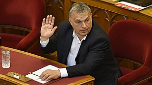 Hungary's Orbán apologises for calling pro-expulsion parties