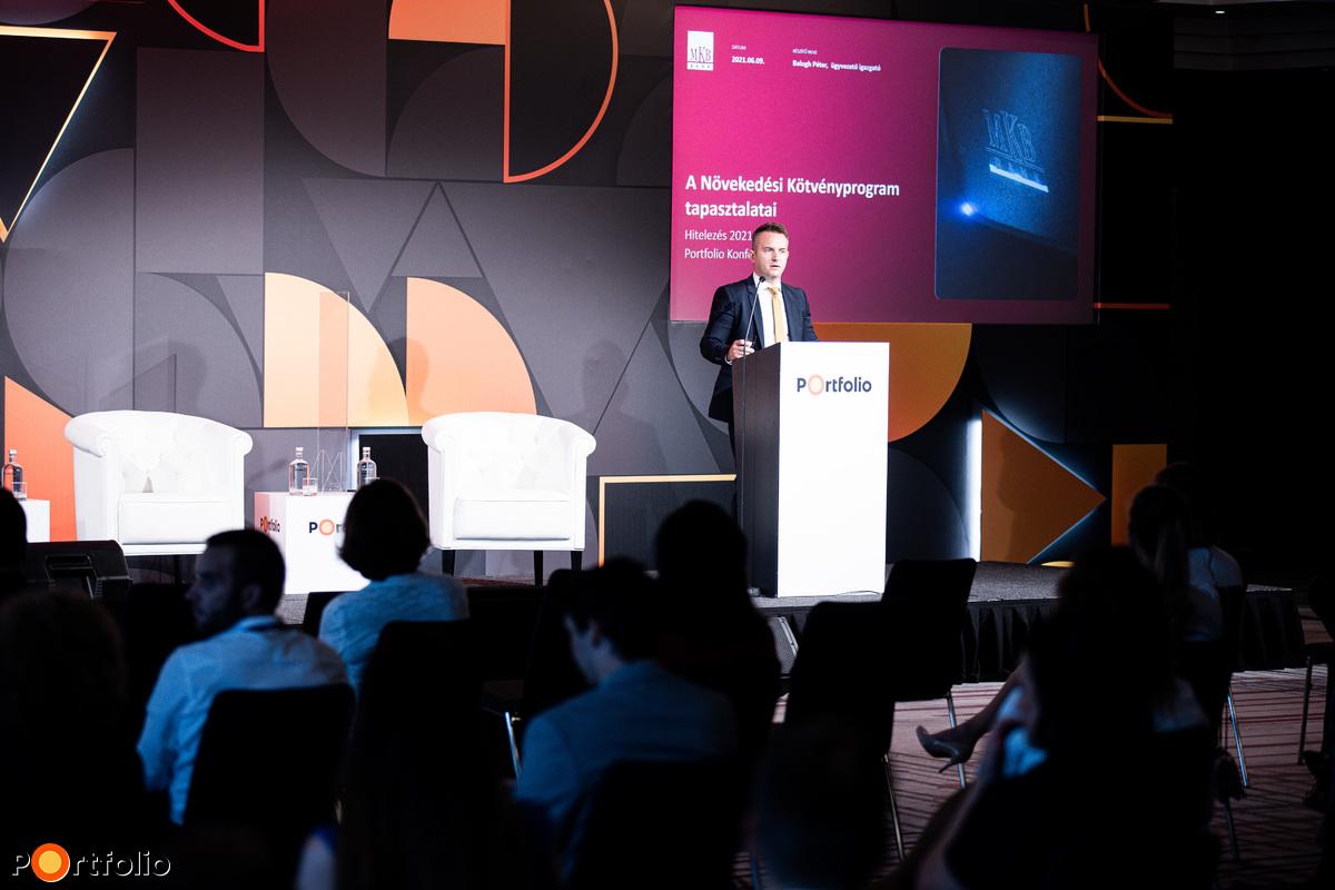 Balogh Péter (ügyvezető igazgató - Nagyvállalati Ügyfélkapcsolatok és Strukturált Finanszírozási Ügyvezető Igazgatóság, MKB Bank): Növekedési Kötvényprogram nagyvállalatoknak: az első két év tapasztalatai