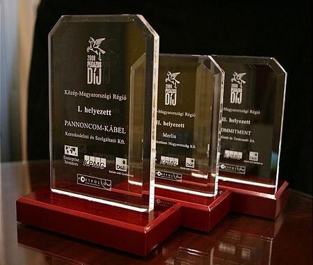 Pegazus 2008 díjak