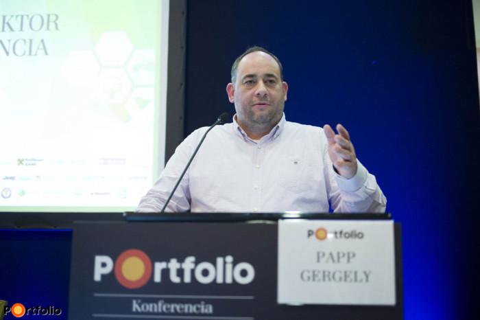 Gergely Papp (szakmai főigazgató-helyettes, NAK)