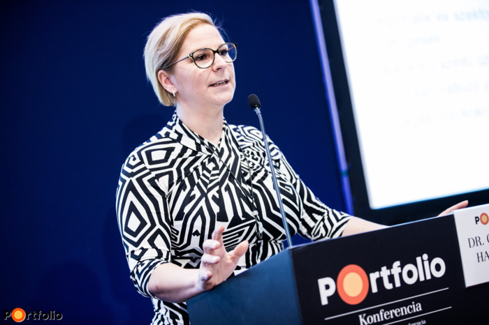 Dr. Hajnalka Csorbai (Head of Strategy, Opten Kft.): Lending from an Entrepreneurial Perspective