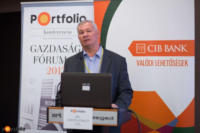 Dr. Szentgyörgyi Pál, alpolgármester, Szeged Megyei Jogú Város Polgármesteri Hivatal