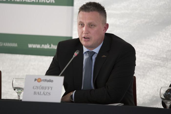 Győrffy Balázs, Nemzeti Agrárgazdasági Kamara elnöke