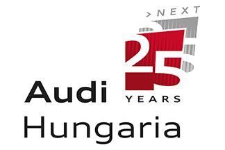 Audi 25